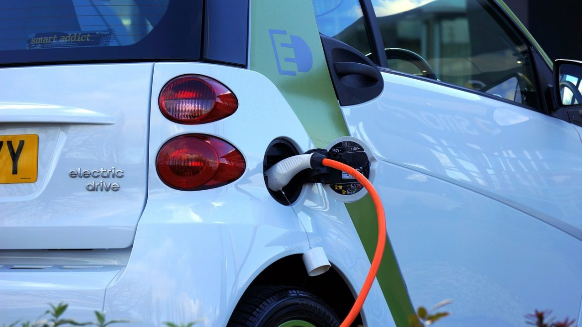 Plug-in hybrid cars might thrive for a while in the transition to electric vehicles