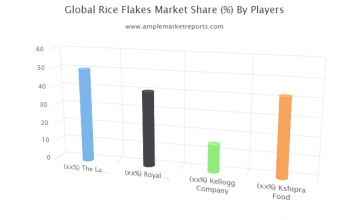 Rice Flakes market Segment by Application