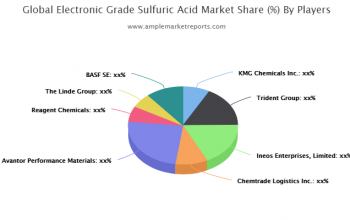 Market trends and outlook coupled with factors driving and restraining the growth of the Electronic Grade Sulfuric Acid market