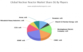 Detailed overview and segmentation of the global Nuclear Reactor market, as well as its dynamics in the industry