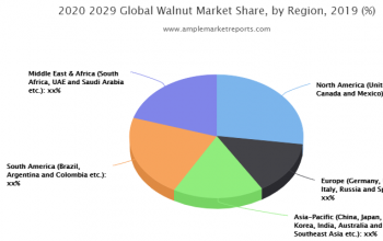 in-depth analysis of key market players functioning in the global - Walnut industry.