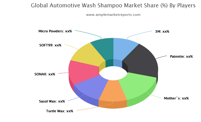 Automotive Wash Shampoo market maintaining a strong outlook heres why