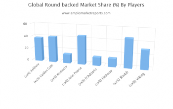 In-depth study of the current Round backed market including major geographical regions.