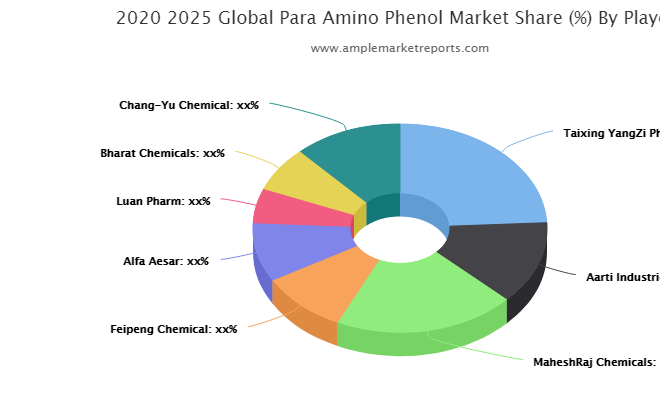 what challenges Para Amino Phenol market may see in next 5 years